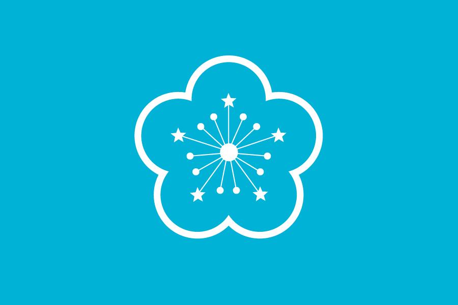 Flag_of_TAIWAN_SAR.png